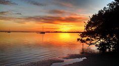 Manatee River, Sunset