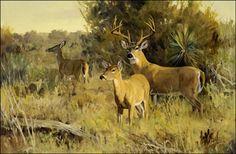Brush county escort by Ken Carlson