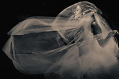New York Wedding Photographer | Philadelphia Wedding Photographer | Susan Stripling