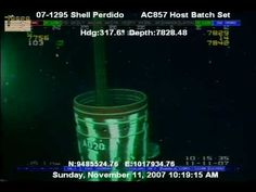 strange unidentified sea creature @ 7000 + feet off shell rig in gulf