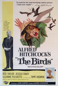 A great poster from The Birds - the unforgettable classic movie from Master of Suspense Alfred Hitchcock! Check out the rest of our excellent selection of Alfred Hitchcock posters! Need Poster Mounts. Classic Movie Posters, Horror Movie Posters, Classic Movies, Horror Movies, Film Posters, Old Movie Posters, Jessica Tandy, Scary Movies, Great Movies