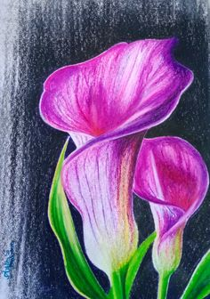 Oil pastel in paper Oil Pastel Paintings, Oil Pastel Art, Oil Pastel Drawings, Oil Pastels, Pastel Colours, Pastel Flowers, Art Flowers, Oil Pastel Landscape, Landscape Paintings