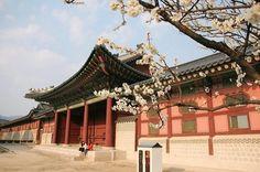 Seoul korea.
