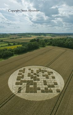 Latest Crop Circle Images 2012 - Photography by Steve Alexander(this looks like a code area marking.., right?)