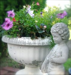 LOVE CHERUBS ANYWHERE