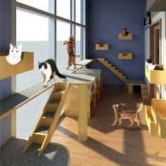 Animal Care Archives - Page 3 of 10 - Rauhaus Freedenfeld & Associates - Kedi evi Hotel Gato, Cat Hotel, Cat Daycare, Pet Clinic, Animal Clinic, Shelter Design, Cat Cages, Pet Boarding, Hospital Design