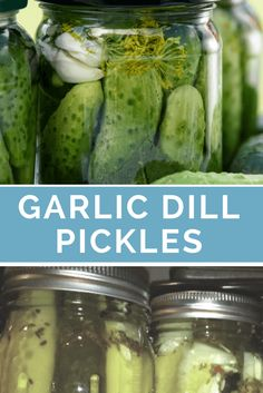 Garlic Dill Pickles Recipe for canning or quick refrigerator pickles. These are crazy good and pretty much the only reason I grow cucumbers every year!