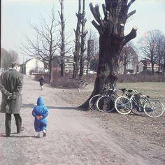 Majoor Bosshardt Plantsoen Utrecht (jaartal: 1960 tot 1970) - Foto's SERC
