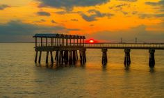 Check out our upcoming Mother's Day and Easter Brunch specials on Jekyll Island at The Jekyll Island Club Resort Jekyll Island Club Hotel, Photography Workshops, New Theme, Upcoming Events, Explore, Sunrises, World, Places, Travel