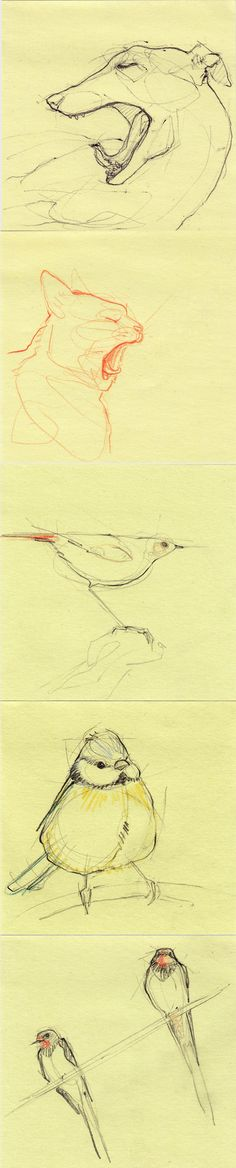line sketch, art, sketches, anim sketch, adara sánchez, adara sanchez