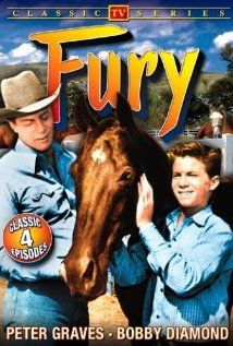 Fury -- my sister and I watched reruns of this on Saturday mornings when we were little...loved it!