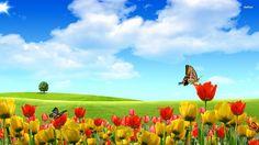 Butterfly On Blue Flower Wallpaper Flowers Nature Wallpapers) – Wallpapers Wallpaper Nature Flowers, Beautiful Landscape Wallpaper, Spring Wallpaper, Flower Background Wallpaper, Beautiful Flowers Wallpapers, Beautiful Landscapes, Background Images, Editing Background, Flowers Nature