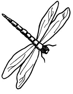 Dragonfly Outline - ClipArt Best