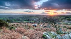 Mystical Bodmin Moor, home to one of Britain's most feared animals - the legendary Beast of Bodmin North Cornwall, Old Faithful, Sandy Beaches, British Isles, Holiday Destinations, Geology, Countryside, Mystic, Backdrops