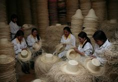 Homero Ortega Panama Hat Company