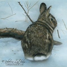 Evening Snow - Rabbit, 8in x 8in, opaque and transparent watercolor with sterling silver on board,... - Rebecca Latham Artist via Google+ on Feb 28, 2015