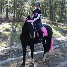"""Kristen P. and her """"Heels Down & Hold On"""" eventing tee."""