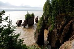 Bay of Fundy.. Low tide many feet back.. High tide goes up to the large part of the rocks .