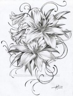 1502 - Lilies (Black and White) by GinnungagapTD on @DeviantArt