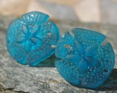 Glass Sand Dollar Cabinet Knobs Beach Glass by KnuckleheadKnobs