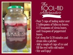 Kool-Aid Alternative: all natural, sugar-free, dye-free, and has a lot of extra health benefits because it's high in vitamin C and bioflavonoids. Refreshing Drinks, Yummy Drinks, Smoothie Drinks, Smoothies, Low Carb Recipes, Whole Food Recipes, Free Recipes, Mocktails For Kids, Smoothie