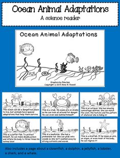 A science reader and coloring book about ocean animal adaptations. The last page is interactive so the kids can write and illustrate their own page.
