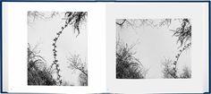 John Gossage - The Pond - Photography Book - Aperture Foundation