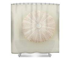 Sea Urchin Shower Curtain Nautical Bathroom by LucidMood on Etsy