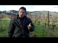 Vine to Wine - Charlie Tsegeletos, Winemaker for @Cline Cellars and Jacuzzi Family Vineyards talks about pruning. Part one of a series of videos about a year in wine.