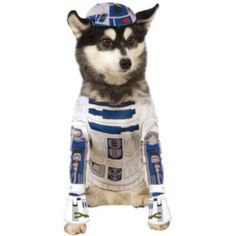 Pet+Star+Wars+R2-D2+Costume