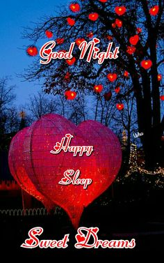 Sleep well and sweet dreams, Da Good Night For Him, Lovely Good Night, Good Night Love Images, Romantic Good Night, Good Night Friends, Sweet Night, Good Night Wishes, Good Night Sweet Dreams, Good Night Image