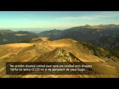 YouTube Gugu, Mount Rainier, Romania, Mountains, Youtube, Nature, Travel, Voyage, Trips