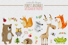 DLOLLEYS HELP: Watercolor Designs Forest Animals