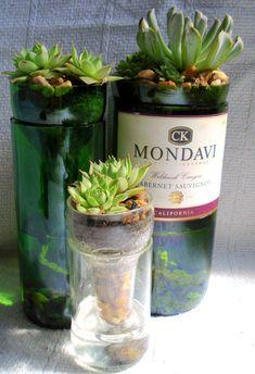 Three cut wine bottle sub-irrigated succulent planters