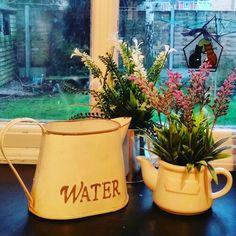 Love these little plastic plants on my kitchen window sill.