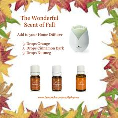 I love diffusing Young Living's orange, nutmeg, and cinnamon essential oil together. A wonderful scent for fall. Join me on Facebook to learn more uses and combinations and find out how to open your own wholesale membership and have access to these and so many more essential oils from young Living Essential Oils. http://www.facebook.com/myoilythymes