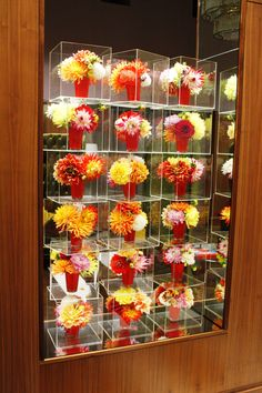 A wall of Perspex boxes with small English Dahlia posies. Is it modern? Is it trad? Or is it just unique? Skates, Set Design, Dahlia, Monopoly, Bespoke, Flower Arrangements, Boxes, Decor Ideas, English