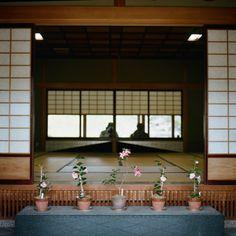 Japanese engawa(verandah)love this!!