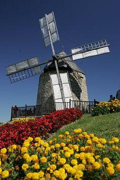moulin à vent de Lautrec by Lautrec Tourisme