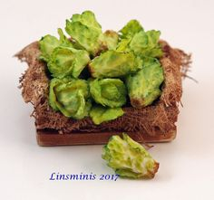 12th Scale Miniature ** Little Gem Lettuce Crate **...IGMA Fellow #Linsminis