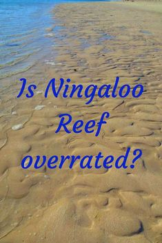 Ningaloo Reef is the largest fringing reef on the planet. It has turquoise blue water, beautiful beaches and prolific marine life. What is there not to love - and yet I was disappointed.