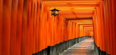 Backroads of Japan - Lonely Planet