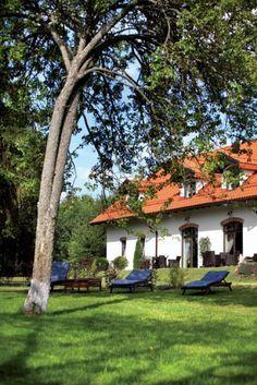 La maison des lavandes   PLANETE DECO a homes world Blog Deco, Places, Garden, Design, Houses, Dreams, Country, Lavender, Home