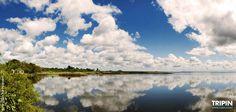 Los esteros del Iberá forman el segundo humedal más grande del mundo. Es una de las grandes reservas naturales de Argentina, con paisajes de una belleza inigualable. http://www.tripin.travel/esteros-del-ibera/esteros-del-ibera.html The Ibera wetlands are the second largest wetland in the world. It is one of the great natural reserves of Argentina, with landscapes of unparalleled beauty.