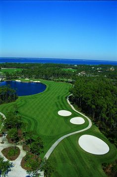 Golf Courses Played--Golf Destin, FL: Play the Regatta Bay Course with the Resorts of Pelican Beach's Golf Package Florida Golf Courses, Famous Golf Courses, Public Golf Courses, Golf Push Cart, Golf Holidays, Golf Course Reviews, Destin Florida, Golf Lessons, Golf Humor