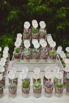 Upominki dla gości - roślinki