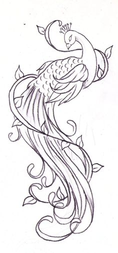 peacock tattoo designs ideas männer männer ideen old school quotes sketches Peacock Sketch, Peacock Art, Peacock Design, Peacock Drawing Simple, Peacock Pattern, Peacock Feathers, Peacock Outline, Peacock Logo, Watercolor Peacock