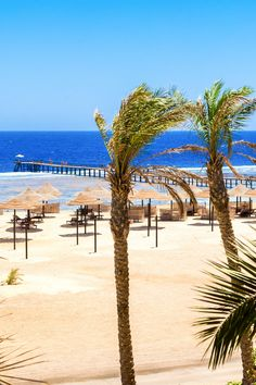 Urlaub in Ägypten. Urlaub in Marsa Alam / Port Ghalib Urlaub am Strand - Siva Port Ghalib & Port Ghalib Resort Strand RED SEA HOTEL! Am Sandstrand entspannen und die Sonne genießen oder schnorcheln oder tauchen zu gehen, ganz egal was man machen möchte, das Rote Meer ist für alles perfekt geeignet.   #egypt #strand #urlaub #steg #korallenriffe #schnorcheln #tauchen #diving #snorkling #relax #rotesmeer #redseahotels #hotels #allinclusive #egypteveryday #hotelsegypt #vacation #beach #redsea Marsa Alam, Sharm El Sheikh, North Coast, Am Meer, Red Sea, Hotels, Summer Vibes, City, Water