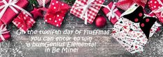 12 Days of Fluffmas - Enter to win a bumGenius Elemental in Be Mine from Cozy Bums Diapers!