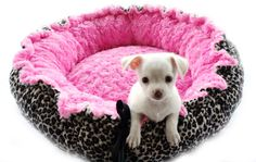 Leopard Minky Pet Bed by OnePoshPup on Etsy, $45.00
